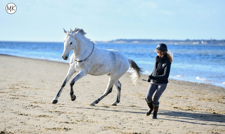 Nana Cerise et Roméo, travail en liberté sur la plage