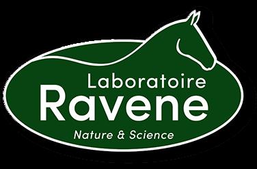 loader laboratoire ravenne